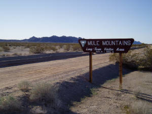 MuleMountains.JPG